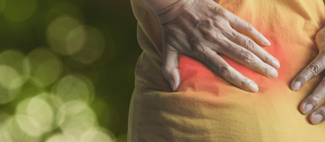 FLPT - Back Pain